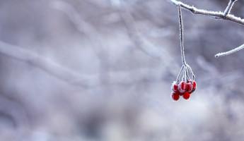 В воскресенье в Пензе похолодает до -25 градусов