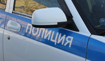 В Пензе 81-летняя пенсионерка стала жертвой беспринципного уголовника