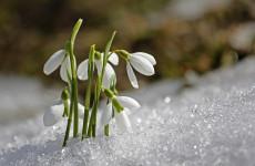 Какая погода ожидает пензенцев 22 марта?