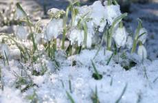Какая погода ожидает пензенцев 23 марта?