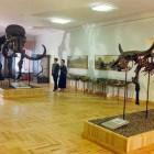 Пензенцы проведут ночь в музее