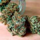 Пензенец предстанет перед судом за хранение марихуаны