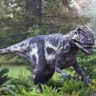 В Пензе могут найти останки редких динозавров