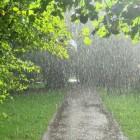 В Пензе на протяжении всех выходных будет главенствовать циклон