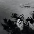 На день ВДВ в пруду на территории парка утонул десантник