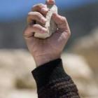 В Пензенской области двое парней забили мужчину камнями из-за «болгарки»