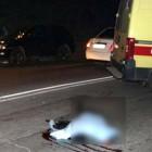 Сотрудники ГИБДД задержали водителя, сбившего насмерть 13-летнюю девочку