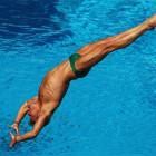 В Пензе пройдут Всероссийские соревнования по прыжкам в воду памяти Анатолия Ларюшкина
